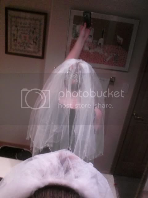 Got my veil D photo 3